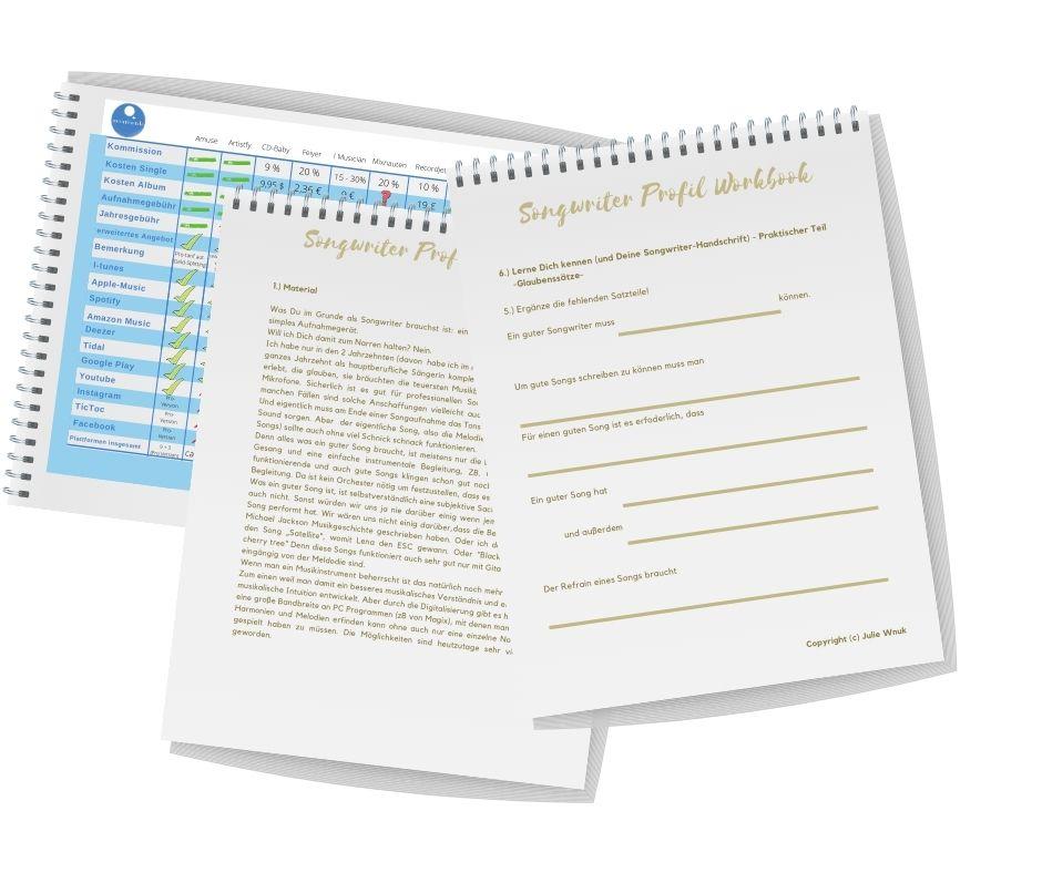 Unterlagen workbook Labelvergleich Songwriting